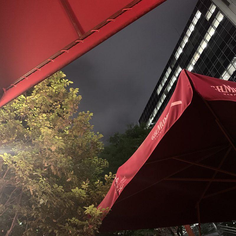 ル・プティ・トノー は、料理・ワイン・雰囲気・接客、文句なしに素敵なお店